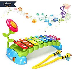 Educational Toys for 1 Year Olds HOMOFY Baby Xylophone