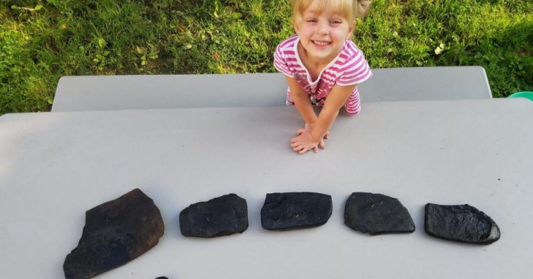 How to Make a Painted Rock Train for The Garden With Kids